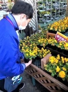 綿半スーパーセンター箕輪店の画像・写真
